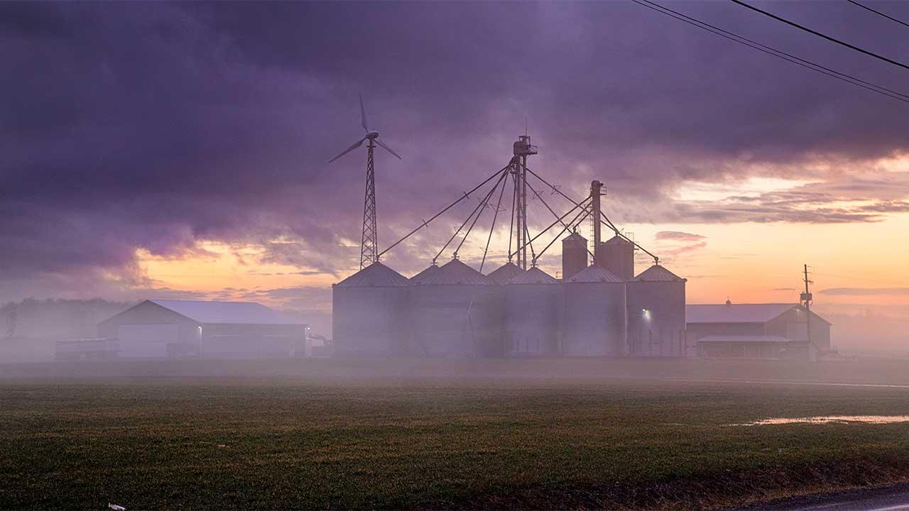 Foggy early evening on the farm in Seneca Falls (photo)